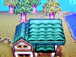 roof-a02.jpg