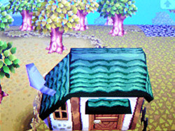 roof-a05.jpg