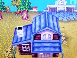roof-e01.jpg