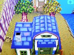 roof-f02.jpg
