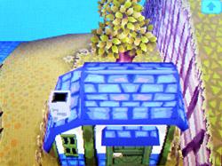 roof-f04.jpg