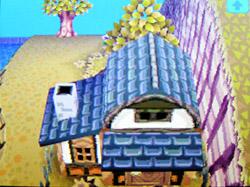 roof-g01.jpg