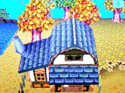 roof-g02.jpg