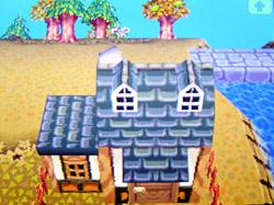 roof-g04.jpg