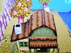 roof-n01.jpg
