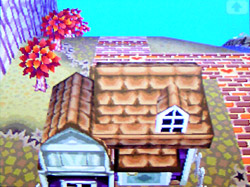 roof-o04.jpg
