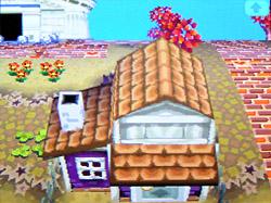 roof-o05.jpg