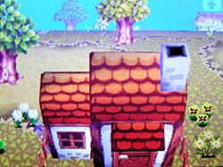 roof-p01.jpg